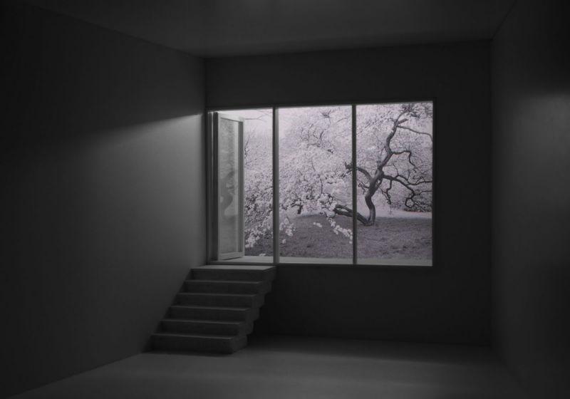 blossom_from_basement_Mayumi_Terada